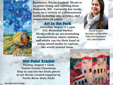 Artist Residency at Turtle River State Park