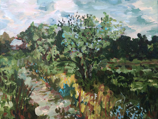 Turtle River State Park Residency Part 1: The Acrylic Paintings