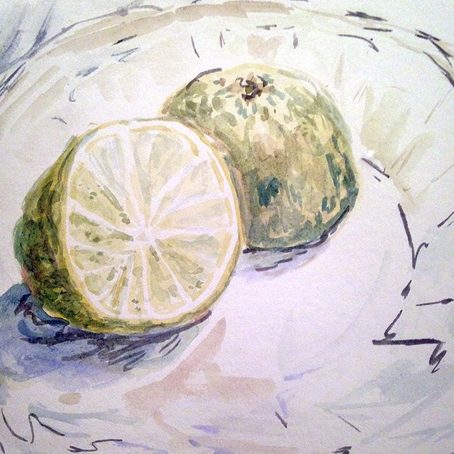 Lime halves on a plate- watercolor for day 6 of thirty paintings in thirty days for January!