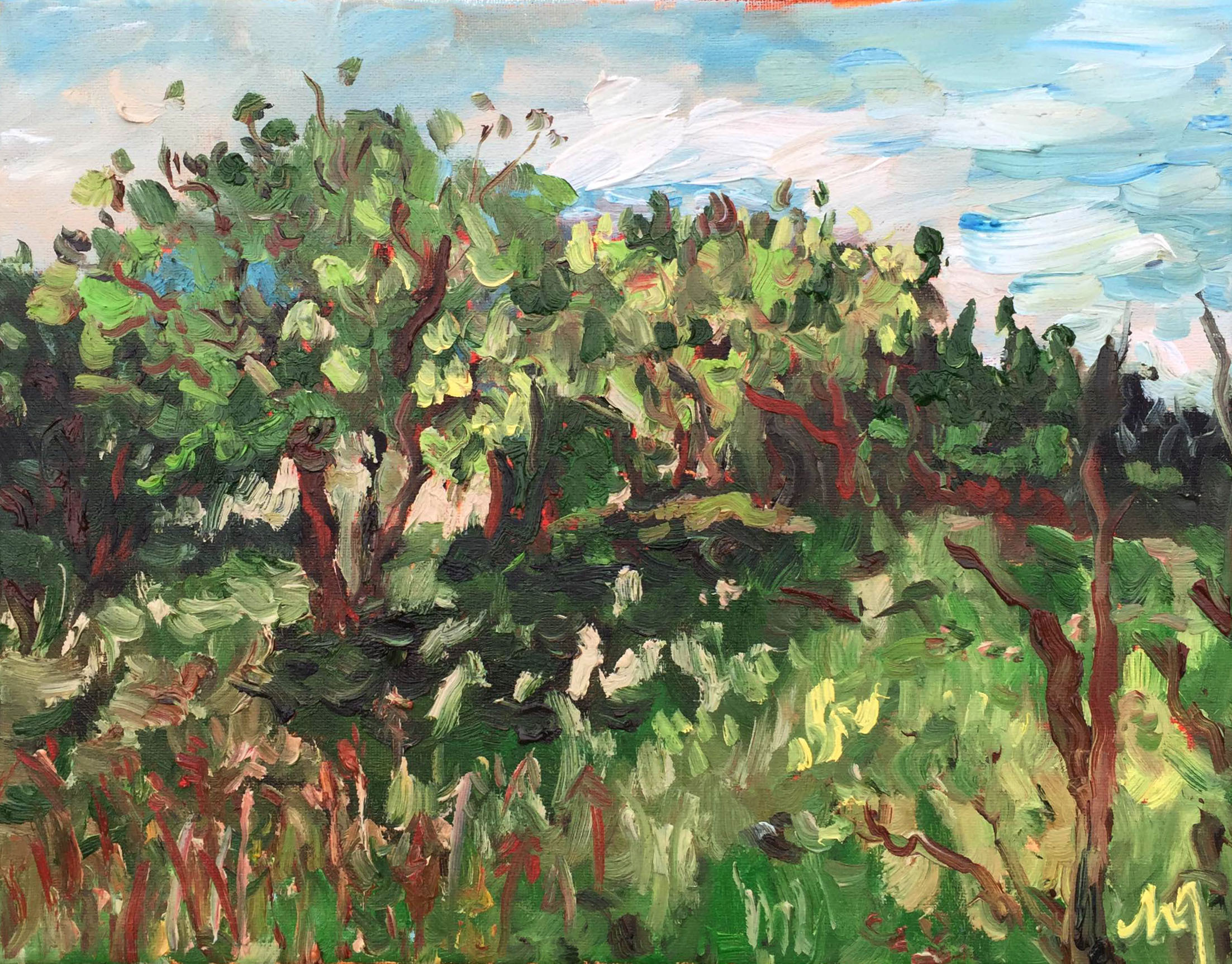 TRSP trees in oil