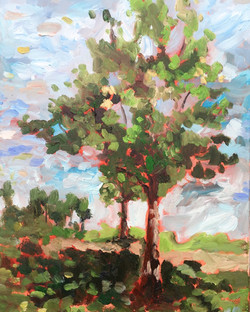 landscape oil tree