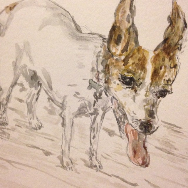 My best buddy- dog watercolor