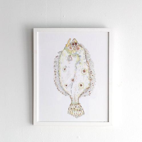 """""""Salty Flounder"""" By Kara Hoblin"""