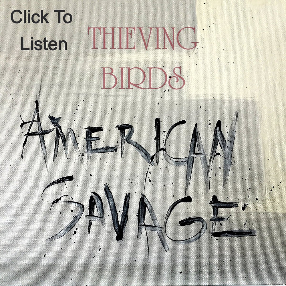 thieving birds american savage new album country music