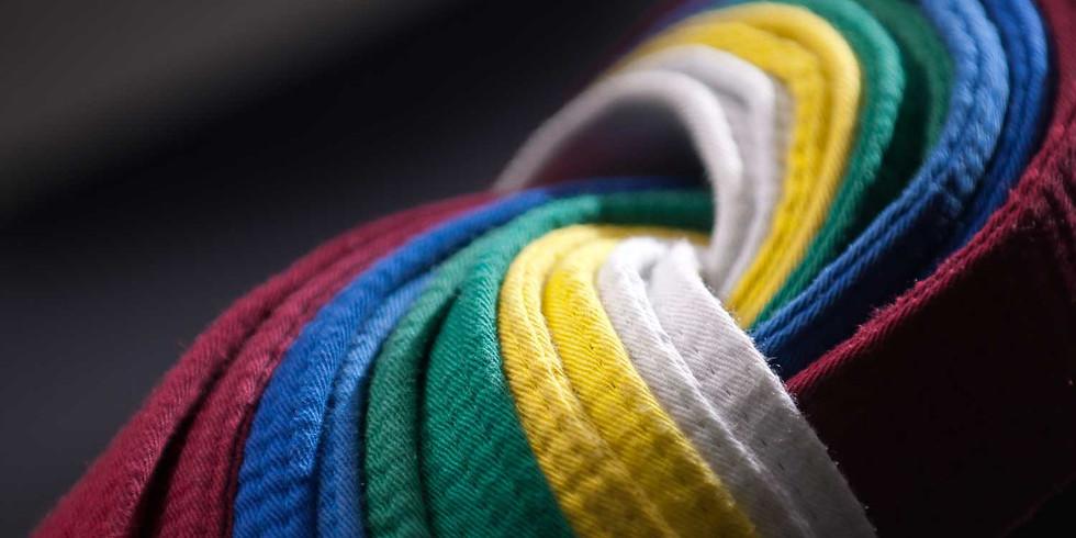 Club Grading Day: Beginners (White, Yellow Stripe)