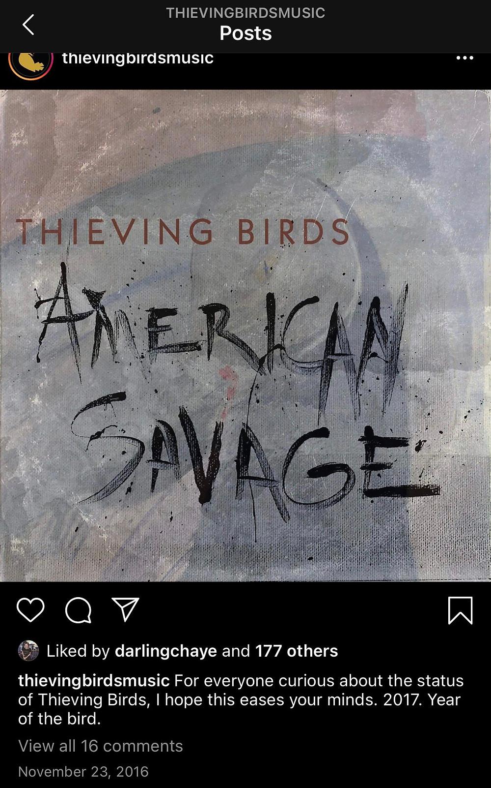 thieving birds new album instagram post