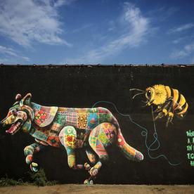 """Mexican Wolf"" - Louis Massai (England)"