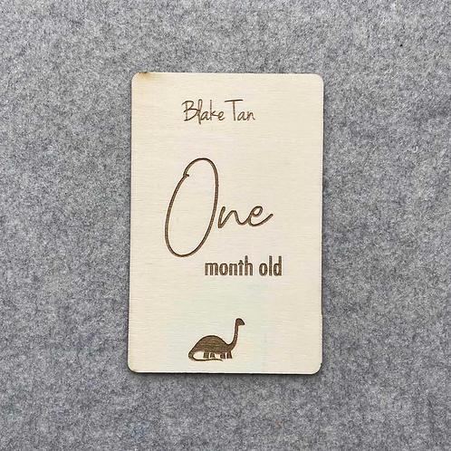 Monthly Milestone Set