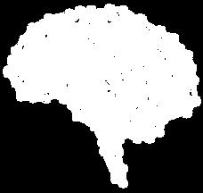cerveau1.png