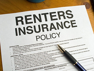 Dog, house, Mobile Home Renters Insurance in Pensacola FL