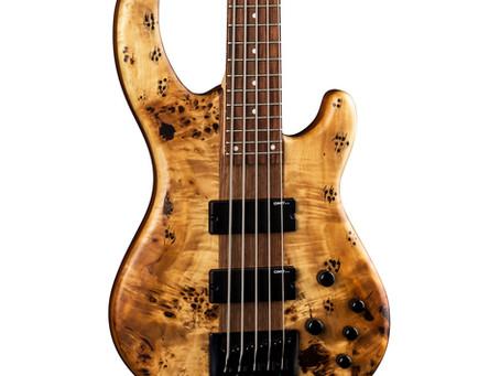Bass juice #2 - topolové krásky od Dean Guitars