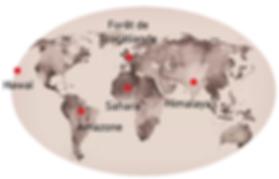 Carte du monde_neo.PNG