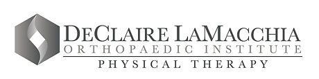 DL Physical Therapy logo 3-2017.jpg