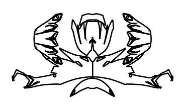 ICON HELMET Wrap_Zeichenfläche 1.jpg