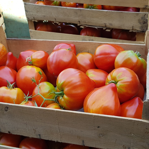 Tomate Fleurette