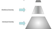 The Diversity Pyramid