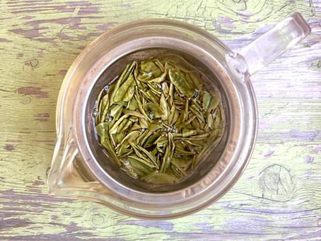 Yu Qian Anji Bai Cha (Anji White Tea) | MASTERS by Adagio