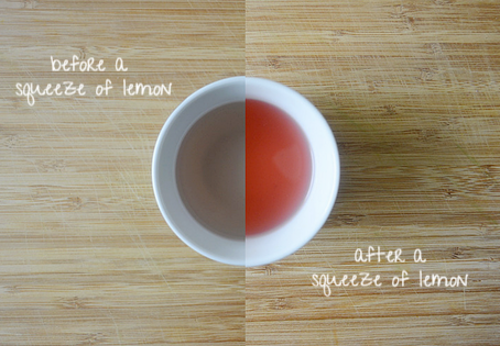 Purple Tea | JusTea