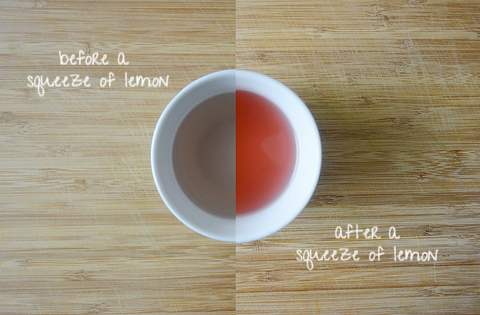 THE HUE: Purple Tea | JusTea