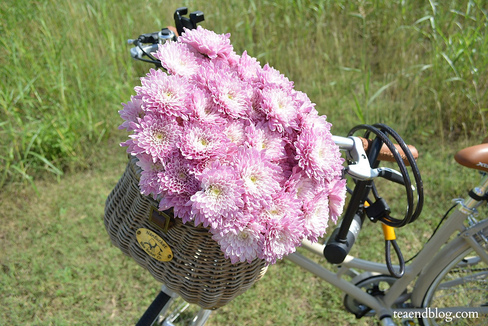 Nantucket Bike Basket filled with pink flowers
