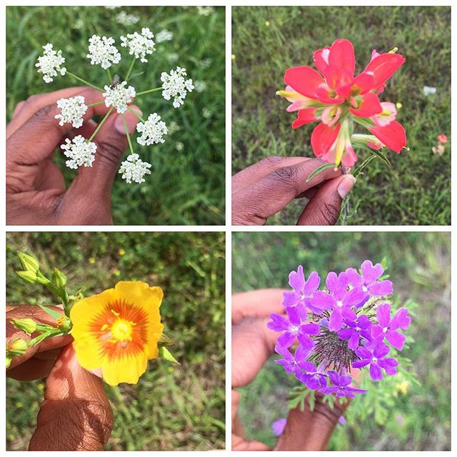 4 Spring Memories That Will Help You Endure Winter