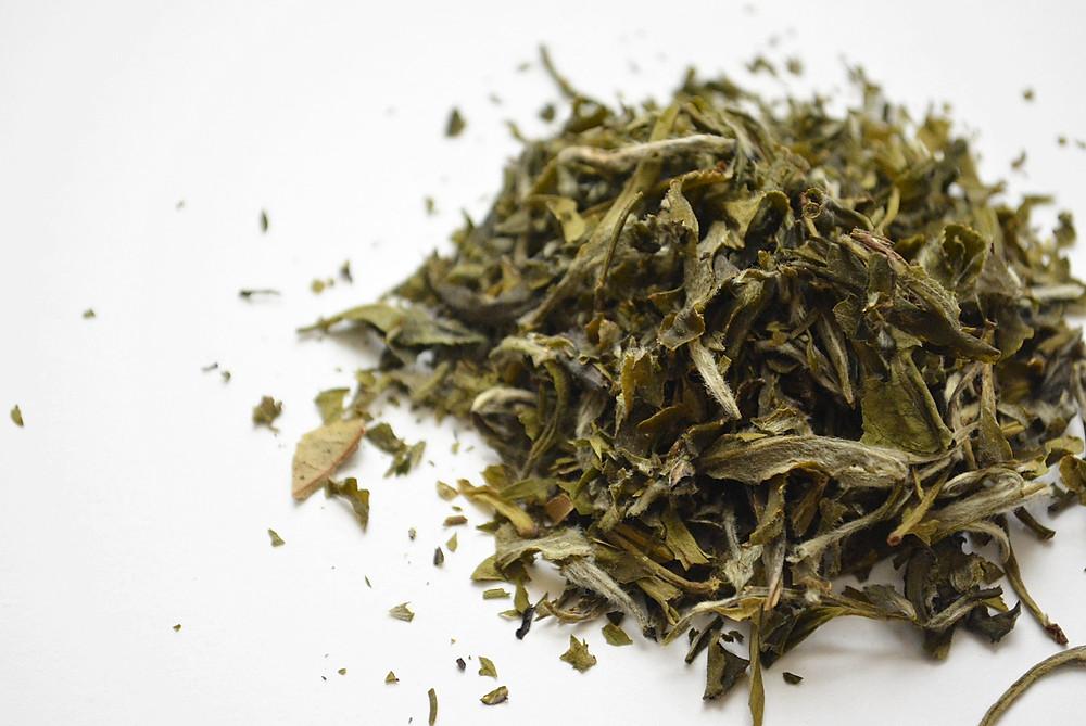 Tea Knowledge | Types of White Tea: Imperial White