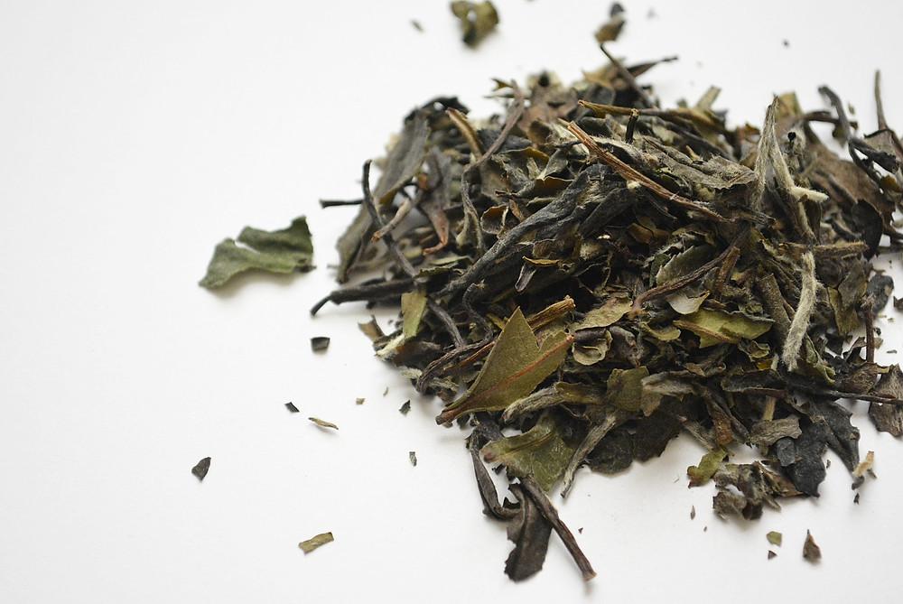 Tea Knowledge | Types of White Tea: White Peony