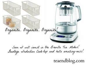 Future tea stuff: Breville Tea Maker and baskets for organization