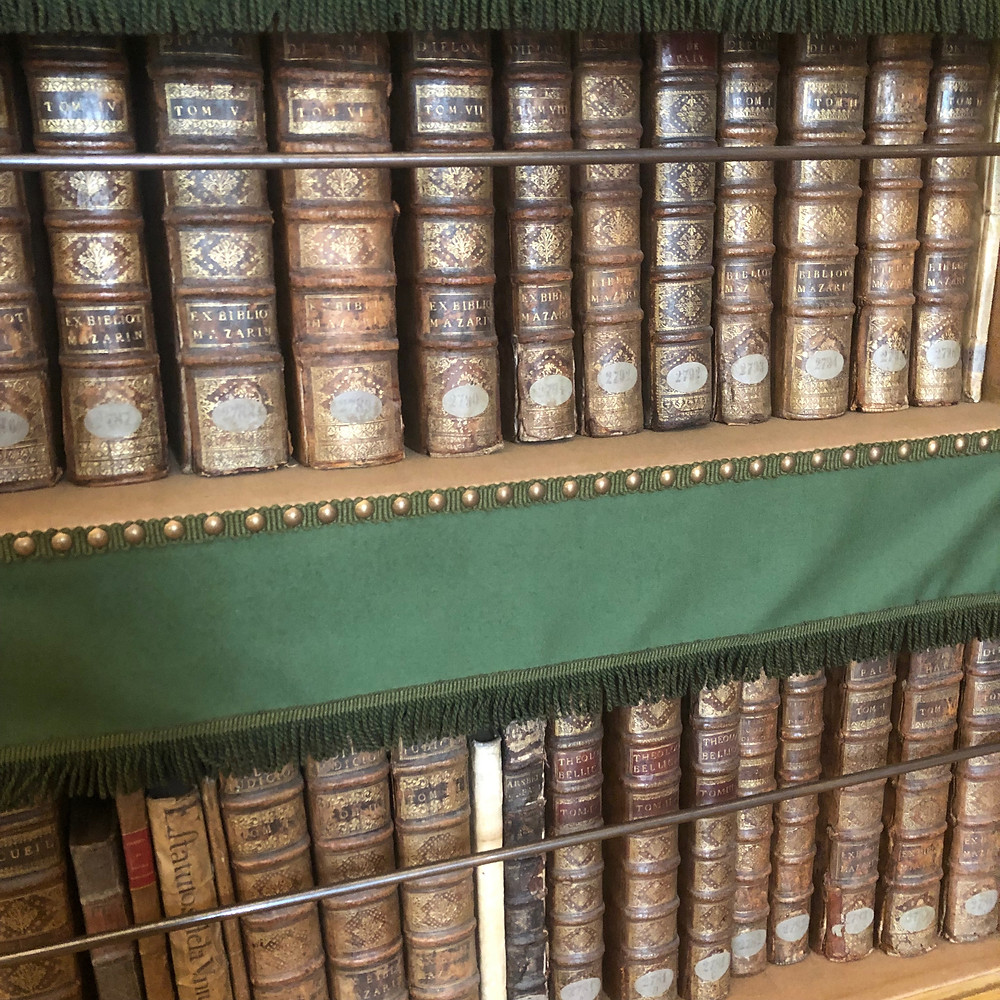 The Mazarin Public Library