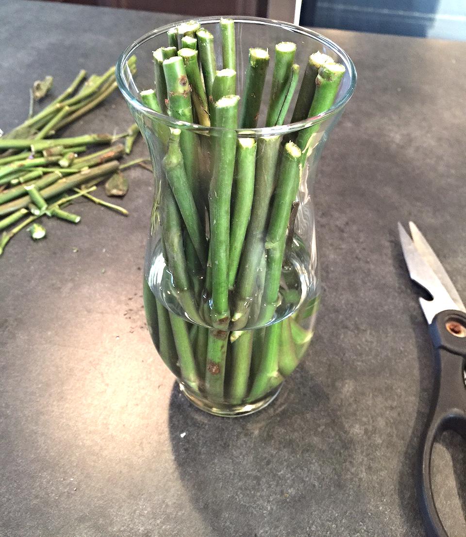 Ajoutez de l'eau à la vase claire pour un look plus naturel.