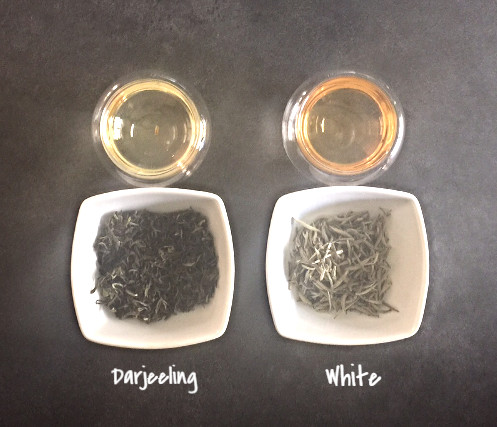 THE EFFECT: Darjeeling Risheehat | The Cultured Cup