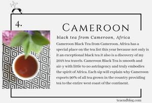 Top Ten Teas of 2019: Keemun Black by Four Symbols Tea