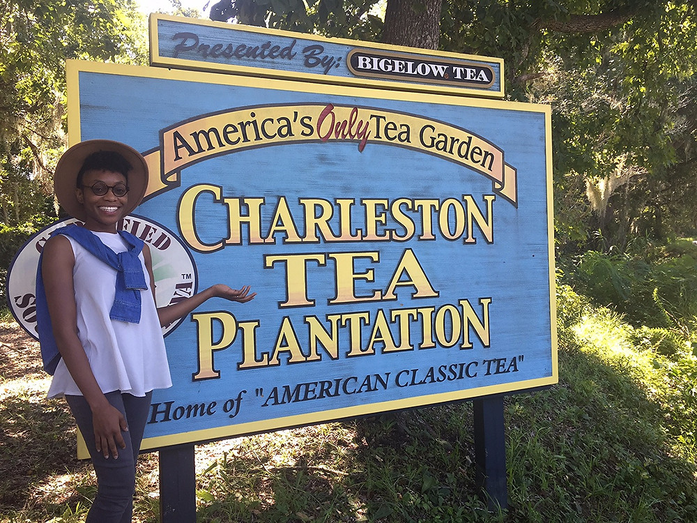 Series: Adventures, Tea Time | Charleston Tea Plantation
