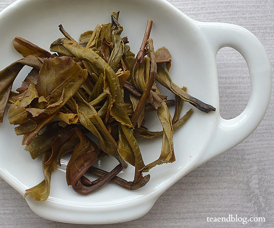 All About Pu'er: Spring 2015 Green Pu'er Tea by Misty Peak Teas