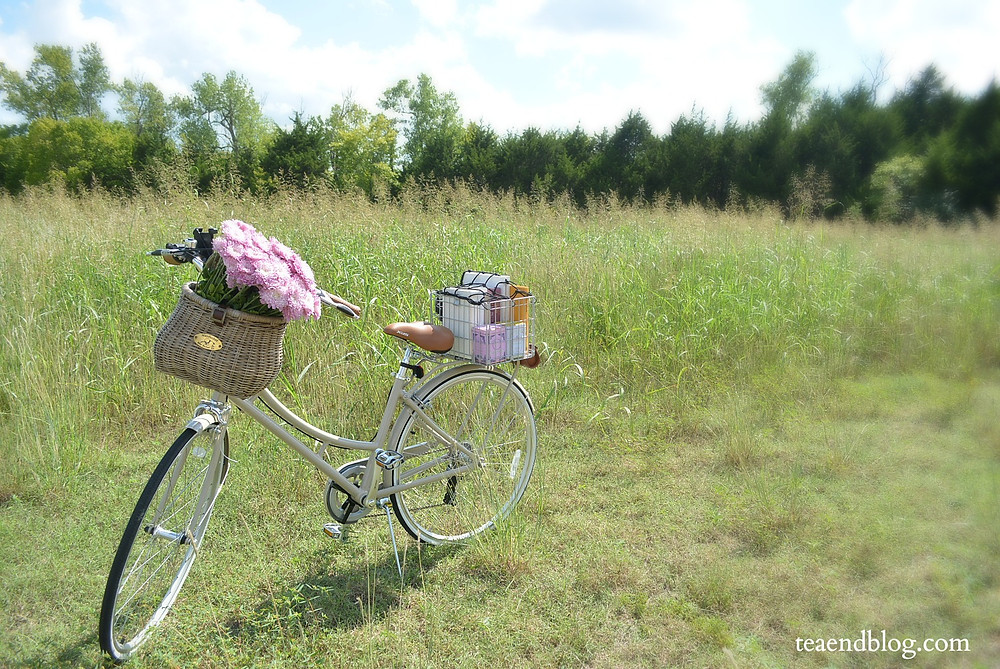 Isabelle, the bike, upright in a Texas prairie field.