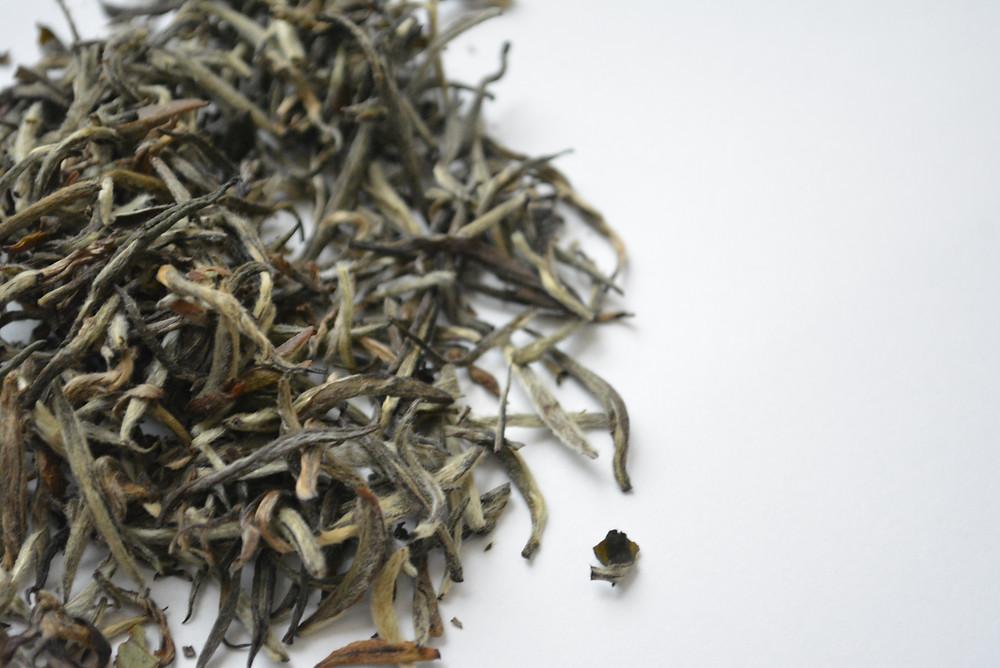 How To Spot Fraudulent White Tea | Silver Needle White Tea