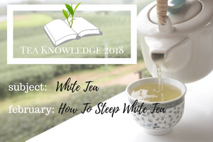 Tea Knowledge | What Is White Tea?