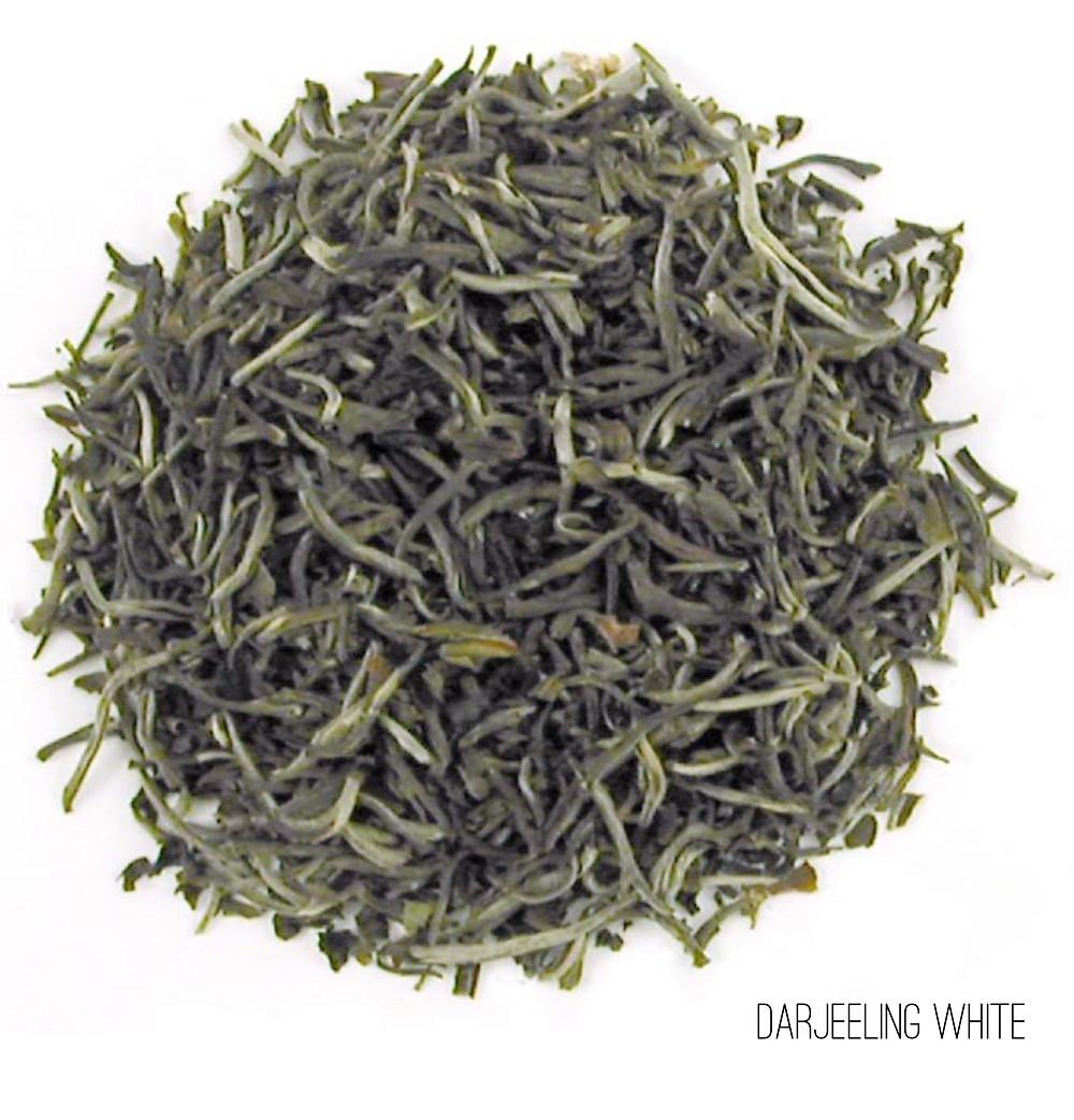 Darjeeling White