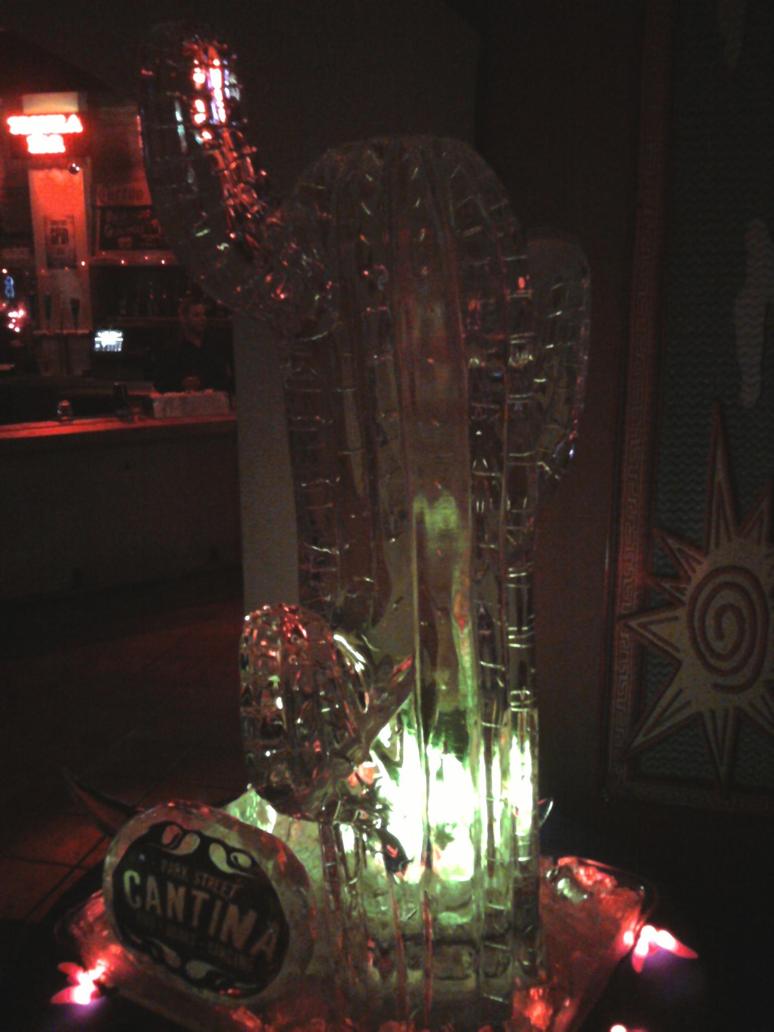 Cactus (Drink Luge)