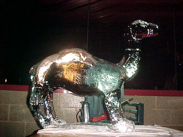 Camel (Cigarrette Company Promo)