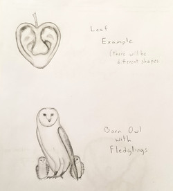 Leaf and Mother Owl Concept