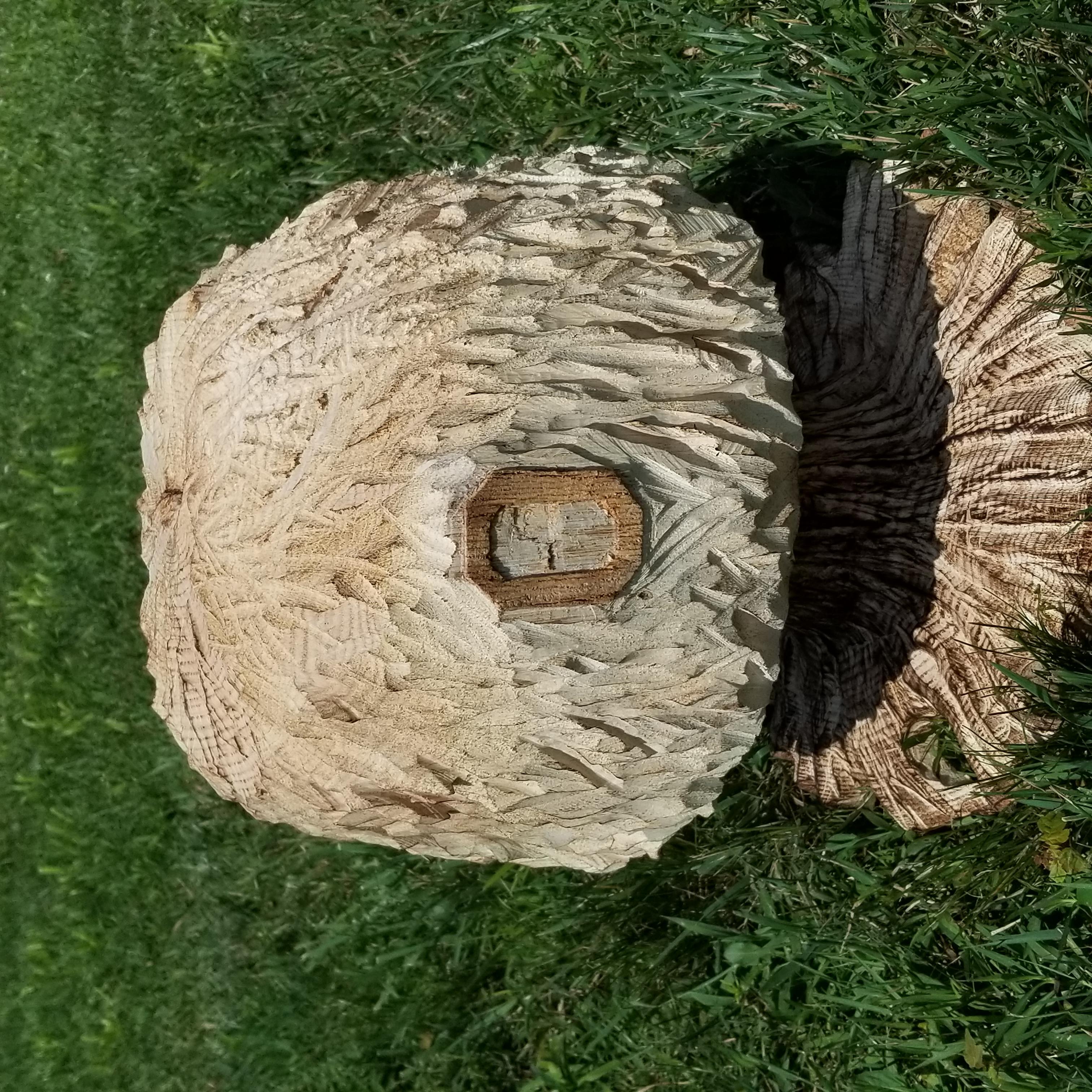 (Sold) Block O Buckeye Tree
