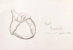 Fruit/Heart Concept