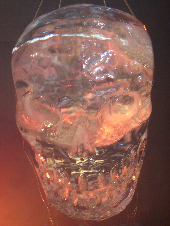 Surviving History Channel Skull