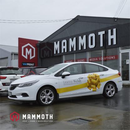 Mammoth Social Media-07.jpg
