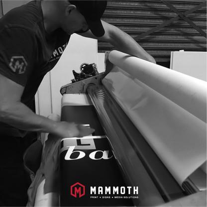 Mammoth Social Media 1-8-04.jpg
