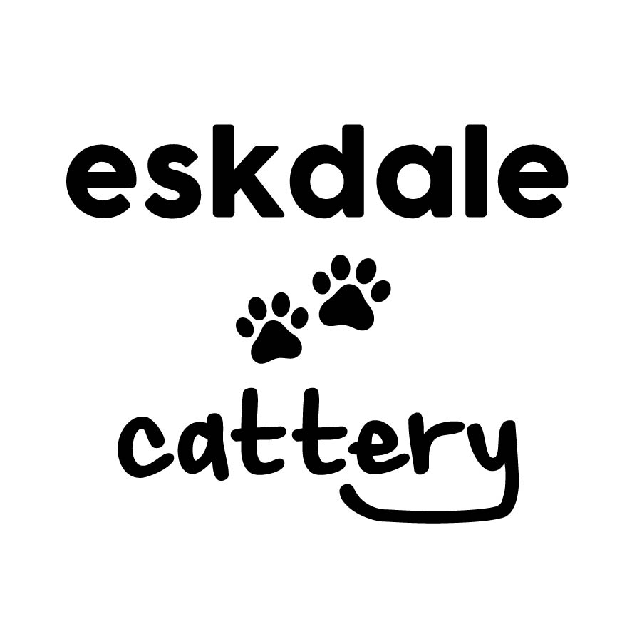 Eskdale Cattery-01