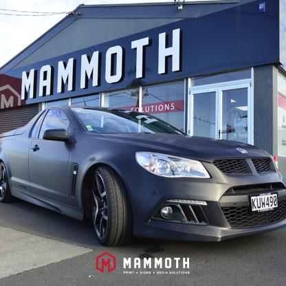 Mammoth Social Media 1-8-05.jpg