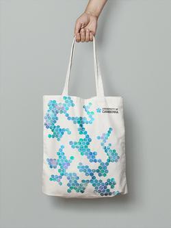 UC Promotional Bag
