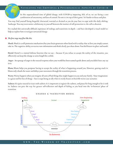 Covid.Change&TransitionModelHandout.png